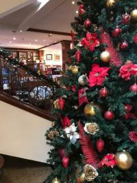 hotel zlatnik nova godina